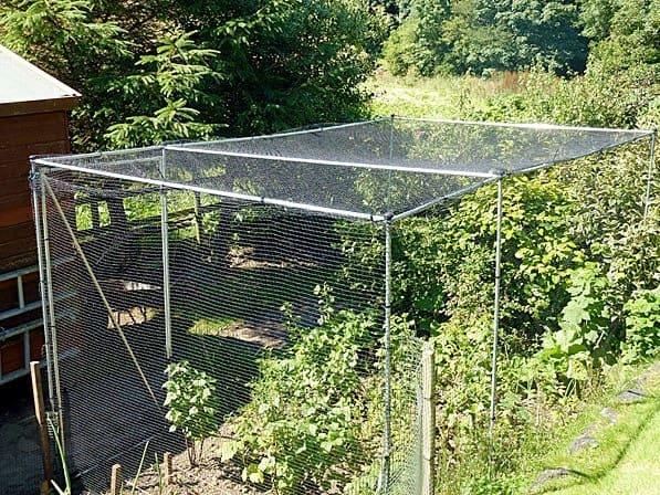 customer fruit cage