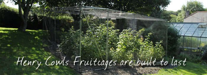 Henry Cowls fruit cages are built to last